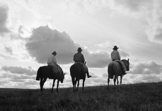 Three cowboys ride the range, c. 1930–1940